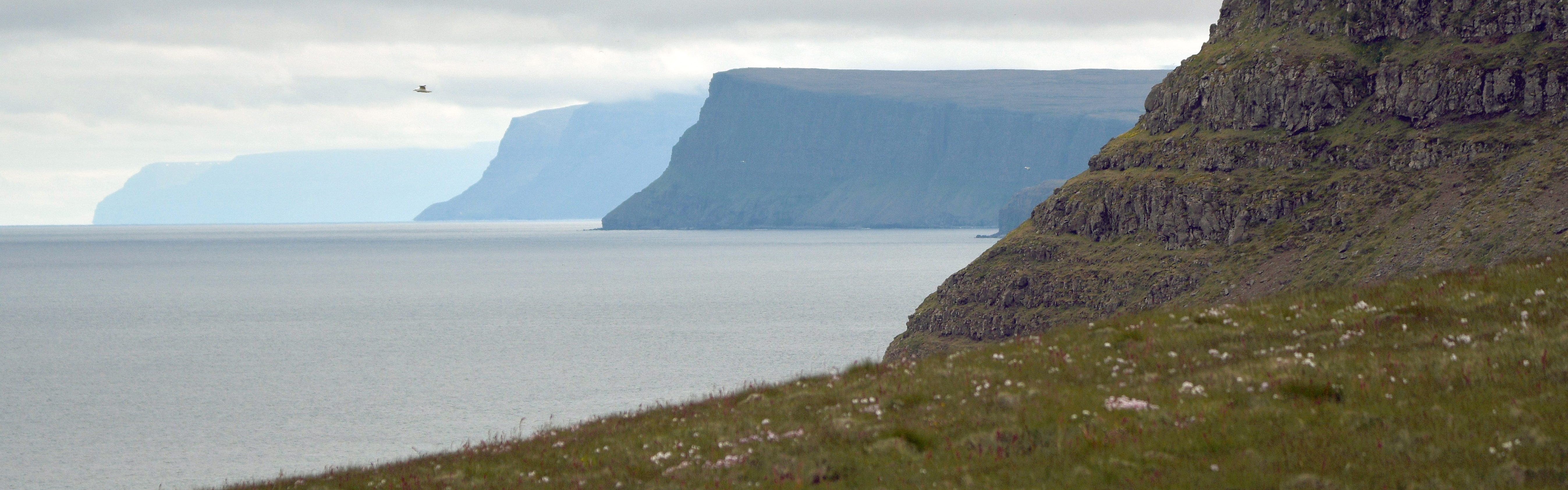 Island – med Vestfjordene i centrum. Med Vrå Højskole. Se rejsen HER